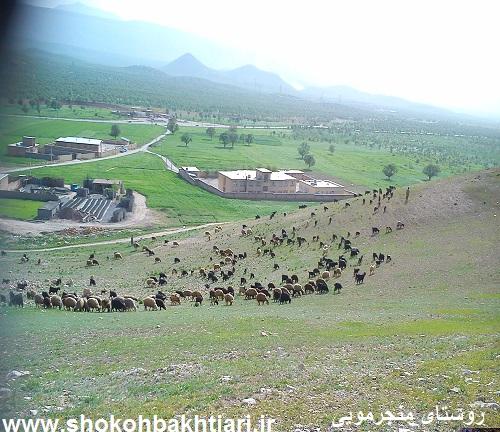 روستای منجرمویی